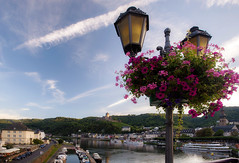 Cochem and the Rhine (JN) Tags: bridge flowers castle lamp river germany deutschland nikon 1735mmf28d rhine cochem 1735mm reichsberg d700