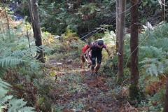 _DSC5362 (pabloviota) Tags: trail samano