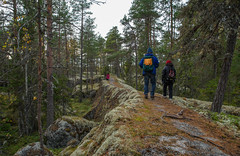 A cool path route (TimoOK) Tags: forest woods kallio hiking path hike mets kuni vaasa mustasaari vaellus polku