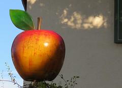 Cities and streets V (Auggen) (Elisa1880) Tags: apple germany appel auggen duitsland