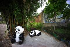 _22 (Taiwan's Riccardo) Tags: color digital sony taiwan evil f45 fixed 15mm a7 heliar vm 2015  milc  voigtlanderlens