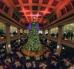 It's Beginning to Feel Like Christmas (Flipped Out) Tags: chicago loop christmastree macys statestreet walnutroom