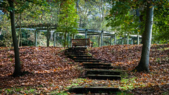 Otoo en la Acebera (Oscar F. Hevia) Tags: autumn trees espaa leaves stairs hojas spain rboles banco bank asturias arbor otoo rosegarden escaleras rosaleda asturies lugones siero emparrado peldaos principadodeasturias laacebera parquedelaacebera