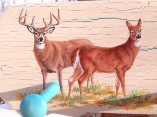 Whitetail Buck and Doe by sherrylpaintz