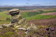 The Salt Cellar, Derwent edge, Derbyshire (Keartona) Tags: summer england landscape scenery rocks view heather derwent derbyshire peakdistrict edge moors colourful saltcellar