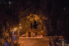 (Psinthos.Net) Tags: road trees winter leaves night spring december nightlights cross pavement chapel sidewalk treebranches paved eucalypts christmasornaments saintnicolas leavs  agiosnikolaos   vrisi  agiosnikolas psinthos                     vrisiarea  vrisipsinthos