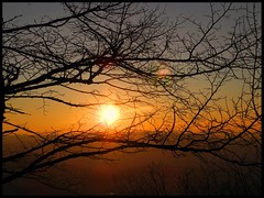Sunset in December (almresi1) Tags: sunset sun tree evening abend ast sonnenuntergang dezember äste baum fellbach
