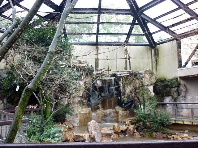こちらは水鳥たちの池で、来園者が自由に歩き回ることができる。|いしかわ動物園