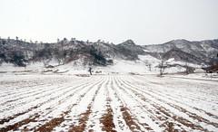 North Korean Winter Landscape (julia_e) Tags: kim north korea il sung dprk