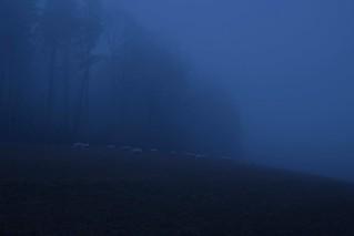Blue(s) Silent I