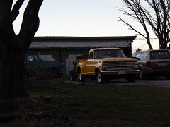 DSCN4251 (89cxsport) Tags: classic ford vintage 4x4 f100 international