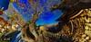 Panorama 1 (gatsishot) Tags: panorama nature nikon sigma greece 1020 orma d5100 gatsishot