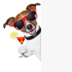 funny cocktail dog (granja la luna) Tags: alcohol animal banner bar beverage blank board card cardboard celebration cheers cocktail copy copyspace dog drink empty frame fresh funny glass glasses heat holiday humor isolated jackrussell martini panel paper party paste pet placard placeholder poster presentation refreshment space summer sunglasses terrier text toast tropical vacation whitebackground