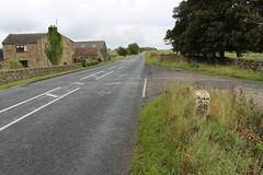 twentyeight miles to go (kokoschka's doll) Tags: farm milestone road