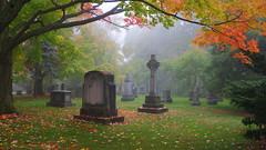 021crpsat (citatus) Tags: fall autumn colours colors mount pleasant cemetery toronto canada afternoon 2016 pentax k3 ii fog foggy misty