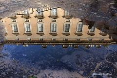 Il mondo sottosopra (francescasmal) Tags: reggia caserta riflessi pozzanghera