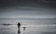 Dog walking (alex_butler_photography) Tags: barryisland beach seaside sea dog pet walk walking bw