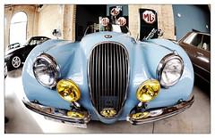 Jaguar XK 120 OTS / 1952 (  114.800 ) (Ruud Onos) Tags: jaguar xk 120 ots 1952  114800 jaguarxk120ots1952114800 jaguarxk120ots1952 jaguarxk120ots jaguarxk120