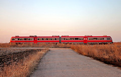 DMG 711 (Mladja_IC431) Tags: 711 train diesel power russian product trains passenger trainspotting traveling autumn colors sunset red railway pancevo sky happiness beautiful outdoor outside serbia srbijavoz nature canon