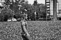 Gppinger Slacklife (Susi Supertramp) Tags: slackline slacklife slacklining elephantslacklines gppingen gp germany autumn herbst esherbstlt susikaiser clemensschwenzer susisupertramp photography filmphotography ishootfilm 35mm 35mmfilm blackandwhite bw sw