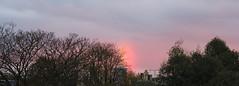 Pink Clouds,Aberdeen_nov 16_68 (Alan Longmuir.) Tags: grampian aberdeen misc sky pinkclouds