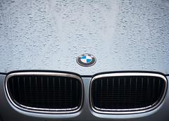 Rainy Day BMW (Orbmiser) Tags: 55200vr autumn d90 fall leaf leaves nikon oregon portland raindrops raining car hood grill bmw