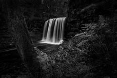 Enchanted (MarkWaidson) Tags: firecrest10stop ystradfellte waterfall monochrome bw trees le waidson