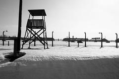 Auschwitz (Steeler Nation UK) Tags: auschwitz holocaust watchtower camp concentration