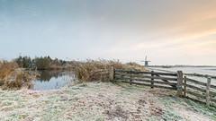 Early mornings at The Donkse Laagten (wimzilver) Tags: wimboon leefilter canon alblasserwaard cold koud canonef1635mmf4lisusm canoneos5dmarkiii holland molen windmill broekmolen