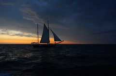 Segler (Gnter Hickstein) Tags: ocean boot coast meer mare balticsea sail ostsee schiff hansesail segelschiff segelboot sailingship segel kste uelzen 2015 gnterhickstein