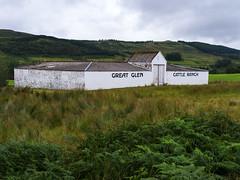 Great Glen Cattle Ranch (Ian_Boys) Tags: scotland greatglen