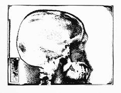 SkullRX1-2 (Federici Luca) Tags: blackandwhite bw art monochrome analog print pattern arte noiretblanc magic bn spell xray lith analogue magia alternativeprocess radiografia alternativephotography altprocess radiographie incantesimo altproc fotomeccanica retinotipografico tipograficecran craniorx lucafederici