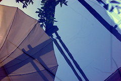 reflected (sillybutterfly) Tags: blue reflection water umbrella blu acqua riflesso ombrellone