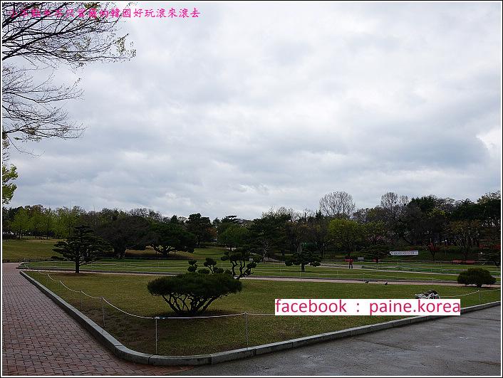 大邱達城公園 (33).JPG