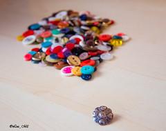 """""""io non sono diverso...siamo tutti uguali!"""" (lea_mil) Tags: colour macro colors colore buttons colori contrasti cromie bottoni diversit uguaglianze grandezze"""