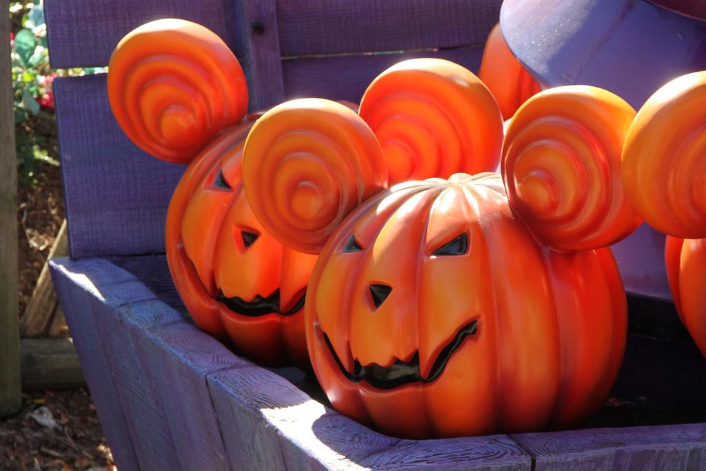 Halloween In Frankrijk.The World S Best Photos Of Cottonwood And Halloween Flickr