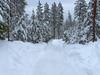 Plowed Driveway, January 2009 (Ed Suominen) Tags: road winter snow snowy snowstorm 2009 heavysnow deepsnow easternwashington stevenscounty inlandnorthwest