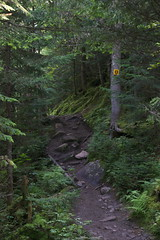 Park Narodowy Jacques-Cartier | Jaques-Cartier National Park
