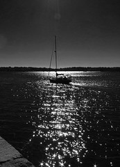 Sailing into the Sunset (Boneil Photography) Tags: blackandwhite bw reflection water silhouette sailboat canon boat powershot g16 boneilphotography brendanoneil