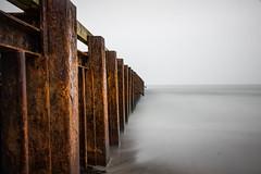 I55A9157.jpg (michael.nilsson.se) Tags: sterlen saltsjbaden ystad sandskogen lngaslutartider