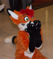 DSC_0101 (Acrufox) Tags: chicago illinois furry midwest december ohare rosemont convention hyatt regency 2014 fursuit furfest fursuiting acrufox mff2014