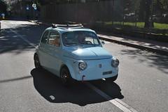 Fiat 500 (TAPS91) Tags: fiat solo 500 cuore 2° raduno carburatore