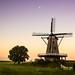 'windhond' Windmill