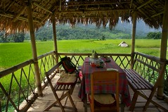 SONY2_ 038264 (andi islinger) Tags: restaurant bamboo verandah ricefield select asia2012 2all2010 wmbpicall laosall laos3oct2012 trekkingday 1bannavillage moungngoiarea sony2038264jpg