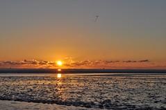 Abendstimmung im Watt (Uli He - Fotofee) Tags: ulrike ulrikehe uli ulihe ulrikehergert hergert nikon nikond90 fotofee nordsee bsum licht watt abendstimmung spiegelung schatten