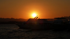 back,  just in time (werner boehm *) Tags: wernerboehm redsea rotesmeer egypt sunset sonnenuntergang