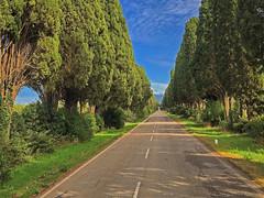 (autobusapedali) Tags: vialedeicipressi road bolgheri tree nature italy squared iphonegrafia trip clouds way