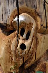 scultura lignea 2 (gian.franco) Tags: legno italy scultura expressyourself