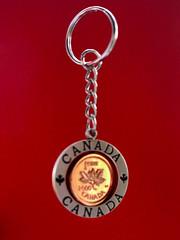 Keyring (Alan FEO2) Tags: keyring chain splitring cent 1 canada canadian shine gleam memento 116picturesin2016 26 keepsake panasonic dmc g1 2oef