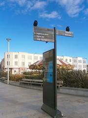 I had this weird dream...., Weston-super-Mare 10-16 (spiralsheep) Tags: uk britain somerset england westonsupermare sign corvidae corvid gothicism photo 2016